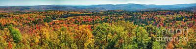 Hogback Photograph - Endless Autumn Foliage by George Oze