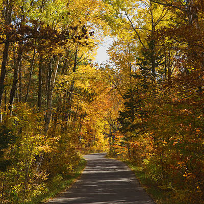 Itasca State Park Photograph - Road To Endless Color by Donald  Erickson