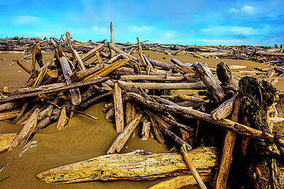 Weatherworn Photograph - Endless Piles Of Driftwood by Garry Gay