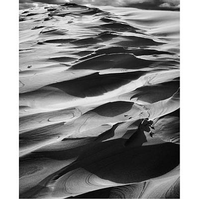 Photograph - Endless Sand  Photo By @pauldalsasso by Paul Dal Sasso