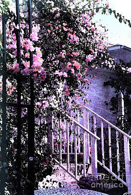 Pink Photograph - Endless Summer by Susanne Van Hulst