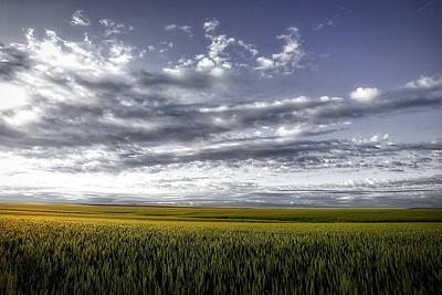 Photograph - Endless Wheat Fields by Lynn Hopwood