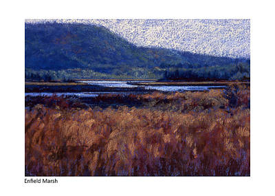 Pastel - Enfield Marsh by Betsy Derrick