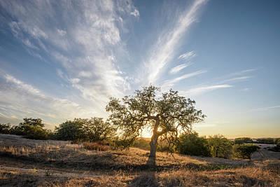 Photograph - Engelmann Sunset by Alexander Kunz