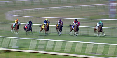 Turf Photograph - Engineering The Winning Horse by Betsy Knapp