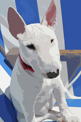 Digital Art - English Bull Terrier by Mary Castellan