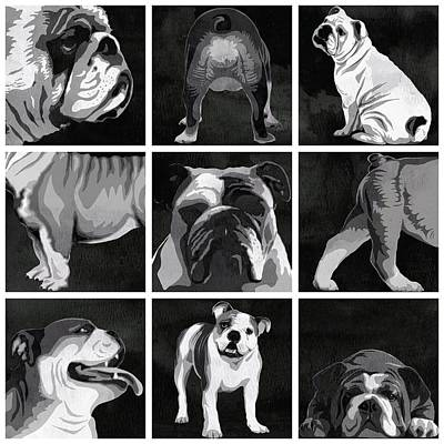 Dog Close-up Painting - English Bulldog Animal Decorative Black And White Multiptych - By  Diana Van by Diana Van