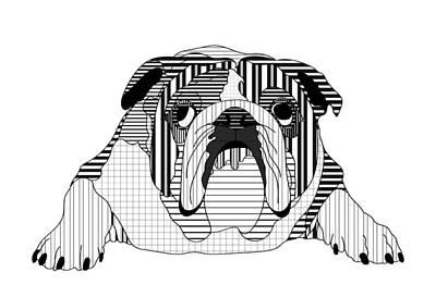 Canine Digital Art - English Bulldog - Line And Graph Art by SharaLee Art