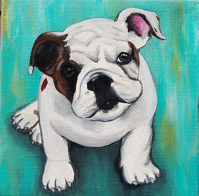 Bulldog Oil Painting - English Bulldog Puppy by Lauren Hammack