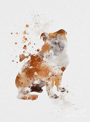 Dog Mixed Media - English Bulldog by Rebecca Jenkins