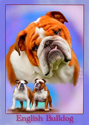 Painting - English Bulldog With Border by Becky Herrera