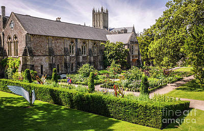 Photograph - English Garden Of Bishops Palace Wells England by Lexa Harpell