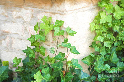 English Ivy Painting - English Ivy On A Brick Wall by Paul Shoopman
