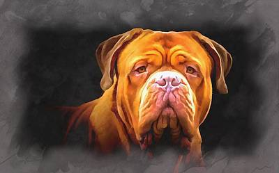 Painting - English Mastiff by Maciek Froncisz