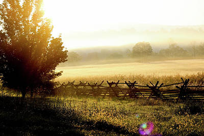 Art Print featuring the photograph English Morning by Everett Houser