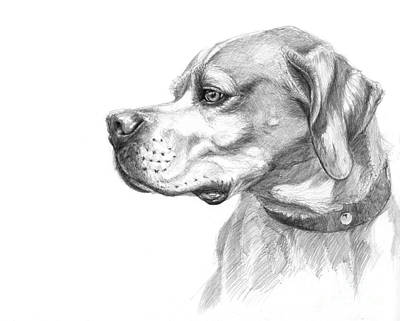 English Pointer Sketch Art Print by Svetlana Ledneva-Schukina