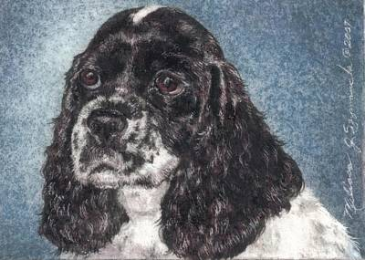 Drawing - English Springer Spaniel Annie by Melissa J Szymanski