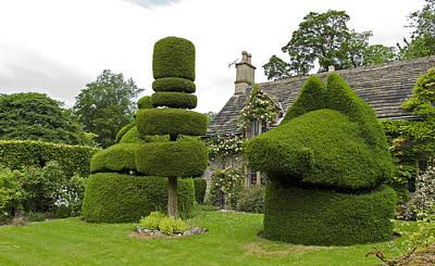 English Yew Topiary Original by Bob Kemp