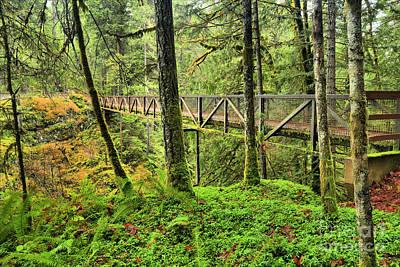Nanaimo Photograph - Englishman River Bridge by Adam Jewell