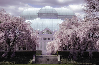 Photograph - Enid Haupt Conservatory New York Botanical Garden by Julie Palencia