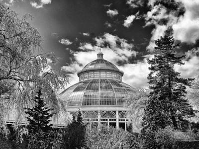White Clouds Digital Art - Enid J, Haupt Conservatory by Jessica Jenney