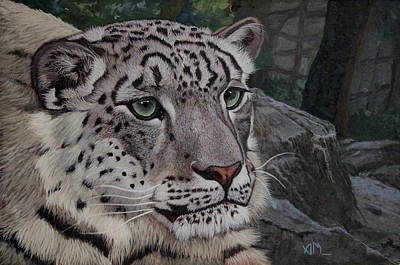 Painting - Enif- Snow Leopard by Antonio Marchese