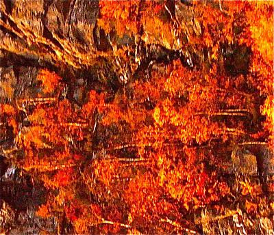 Enigma Orange Art Print by Chris  Riley