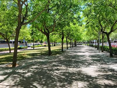 Photograph - Enjoying A Good Walk.  Rambla De Sant Jordi by Cristina Cristo