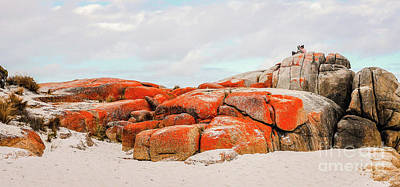 Photograph - Enjoying The Moment Bay Of Fires by Lexa Harpell