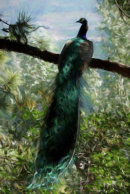 Digital Art - Enjoying The View Dp by Ernie Echols