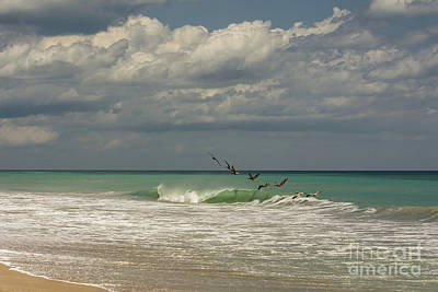 Clouds Photograph - Enjoying The Waves by Zina Stromberg