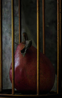 Photograph -  Enrapture  The Pear Drama 987 by Rae Ann  M Garrett
