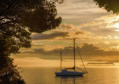Photograph - Enriched Dawn Light by Dee Browning