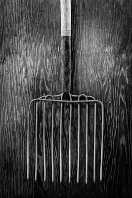 Photograph - Ensilage Fork I by YoPedro