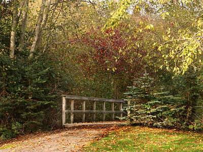 Photograph - Enter Autumn by Patricia Strand