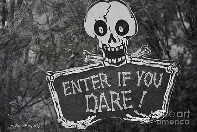 Photograph - Enter If You Dare by Nina Silver