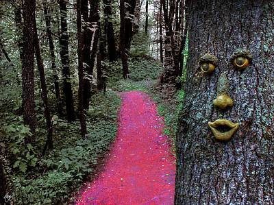 Photograph - Enter The Enchanted Wood by Wayne King