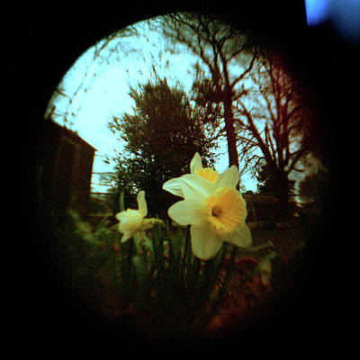Holga Toy Camera Photograph - Enticing Lady by Paul Anderson