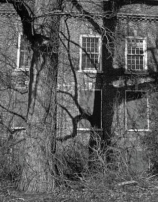 Photograph - Entities by Lynda Lehmann