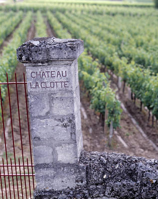 Chateau Photograph - Entrance Of A Vineyard, Chateau La by Panoramic Images