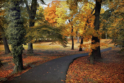 Photograph - Entrance To Autumn by Jessica Jenney