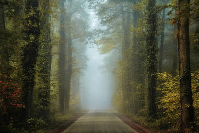 Autumn Road Photograph - Entrance To Autumn by Martin Podt