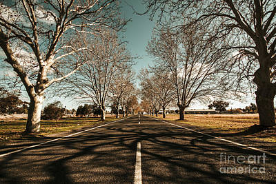 Entrance To Narrandera The Town Of Trees Art Print