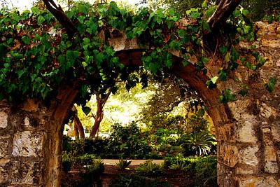 Photograph - Entrar En El Alamo by Susan Vineyard