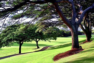 Photograph - Entry Drive To Kahili Golf Course by Kirsten Giving