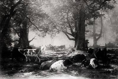 Painting - Environs Of Fontainebleau - Woodland And Cattle by Auguste-Francois Bonheur