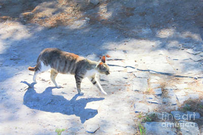 Digital Art - Ephesus Cat by Donna Munro