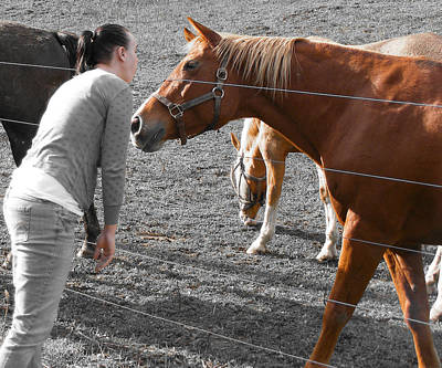 Photograph - Equestrian Love by RLH Photography