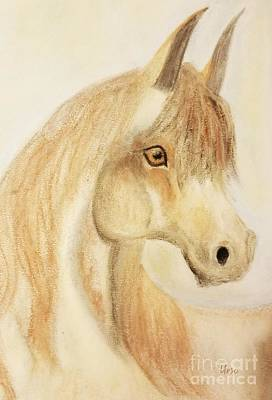 Pastel - Equine Art 17-01 by Maria Urso