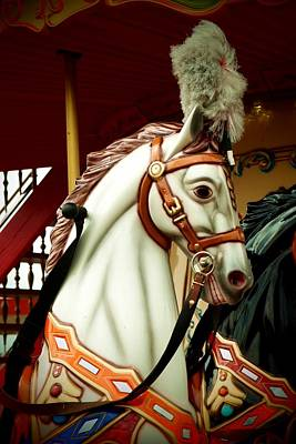 Photograph - Equine by Dora Hathazi Mendes